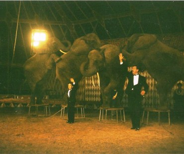 victor hugo cardinali pai e filho com os elefantes