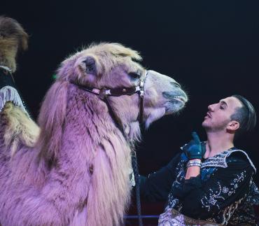 circo victor hugo cardinali camelo natal lisboa 2021 2022